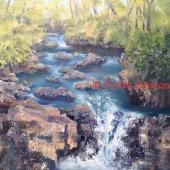 Nadine Johnson - Marysville Falls