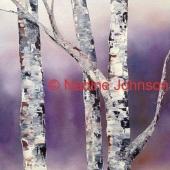 Nadine Johnson - Winter